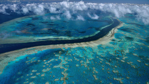 La Grande Barrière de Corail- Australie