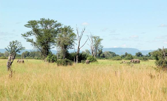 Zambie en Afrique Australe