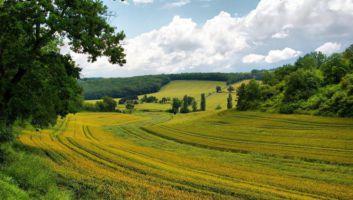 5 choses à voir absolument dans le Gers
