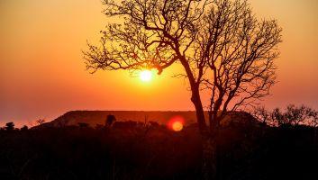 Trucs et Astuces pour bien profiter d'un voyage à Madagascar