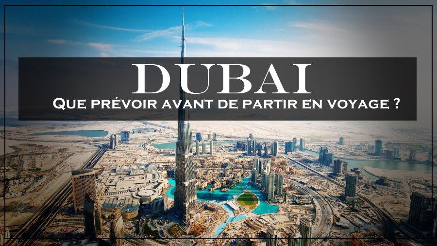 Que prévoir avant de partir en voyage à Dubaï