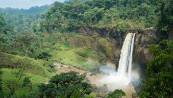 Voyager au Cameroun en un clic